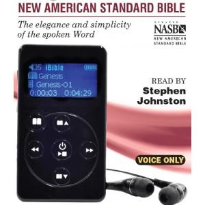 ibible s100 new testaments